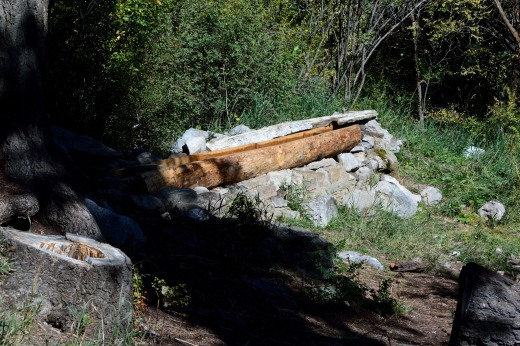 "The new ""Log at Capulin Spring"""